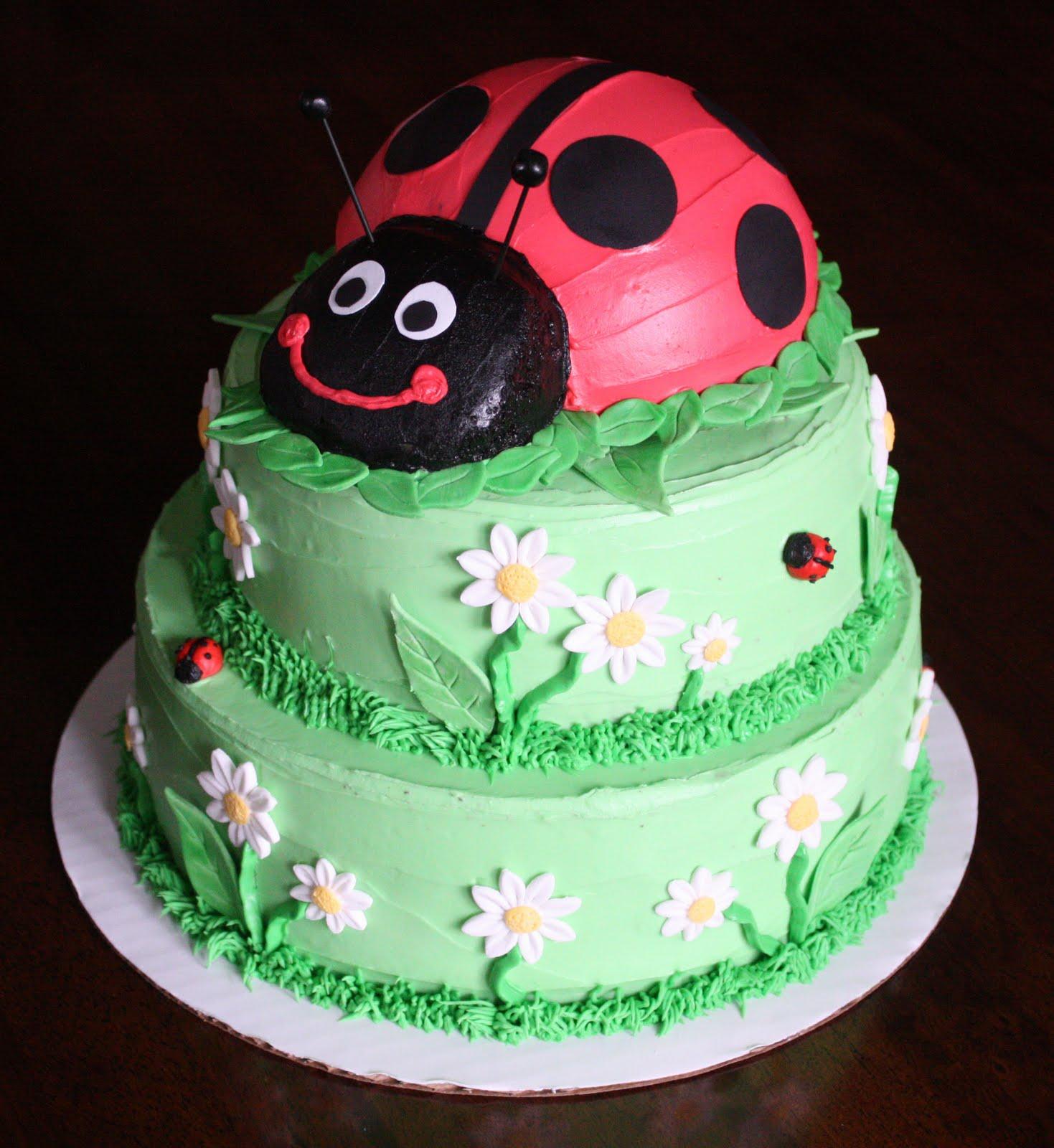 Straight To Cake Ladybug 1st Birthday