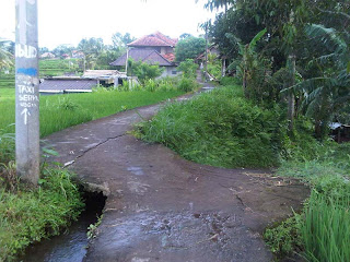 Small Path Ubud