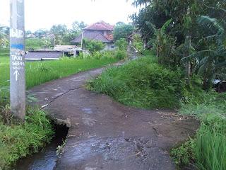 Small Path Ubud
