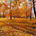 Health and Fitness Tips for Autumn