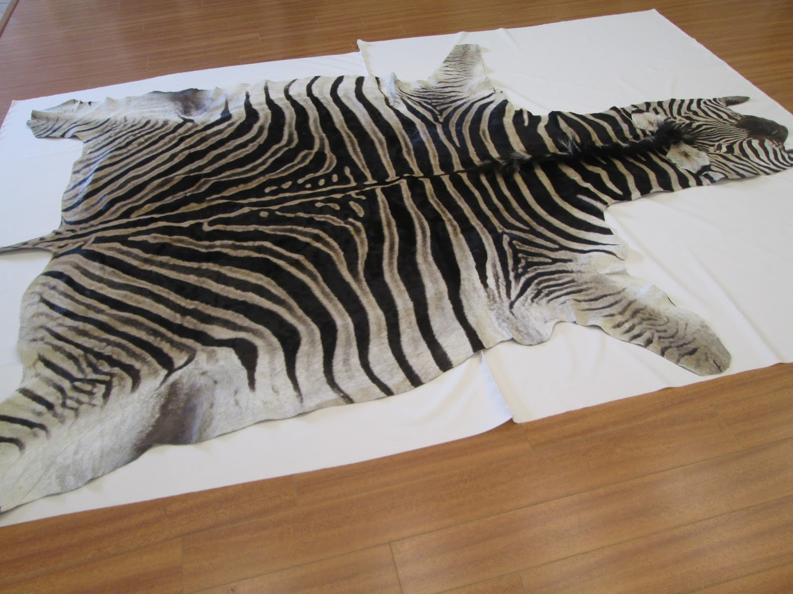 Zebra Hide, Zebra Skin Cleaning And Repair In Los Angeles