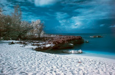 Smith Cove, Grand Cayman, in infrared