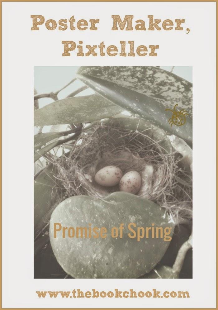 the book chook poster maker pixteller