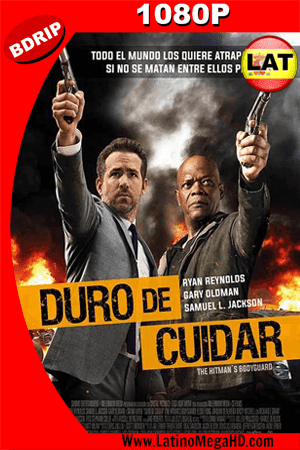 Duro de Cuidar (2017) Latino HD BDRIP 1080P ()