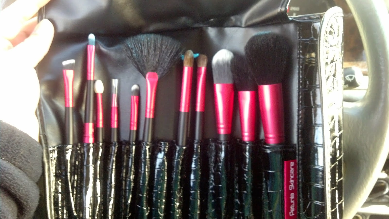Petunia Skincare Professional 12 Set Makeup Brush Kit Review