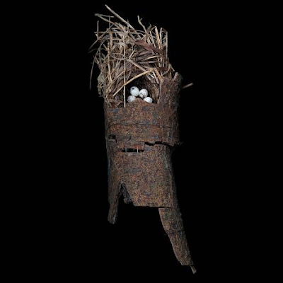 Wonderful Photographs of Birds' Nests Seen On www.coolpicturegallery.us