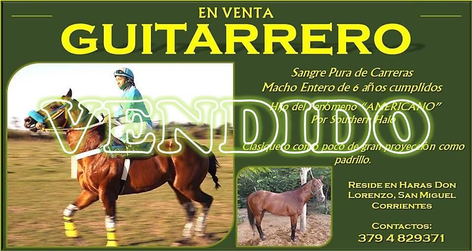 publicidad guitarrero