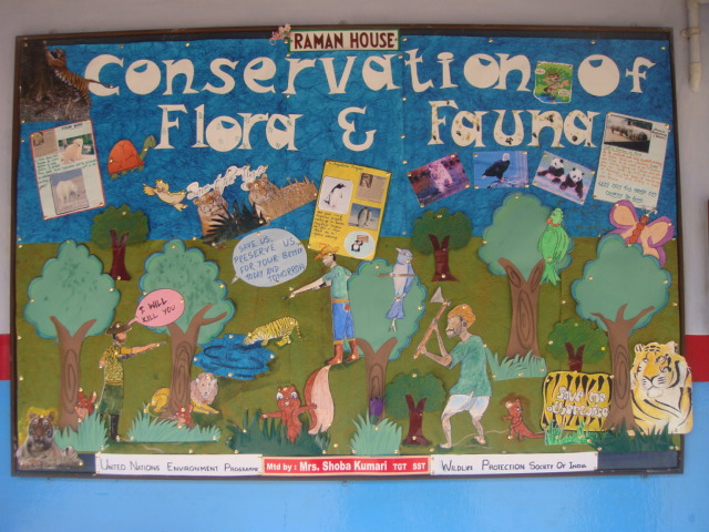 Conservation of flora and fauna essays