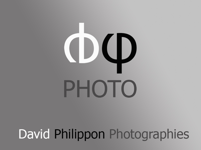 DPhiPhoto/David Philippon Photographies