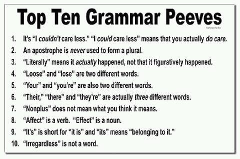 pet peeve essay examples Pet peeves, escalators, and essay writing we all have pet peeves my little pet peeve translates to application essays as well as escalators.