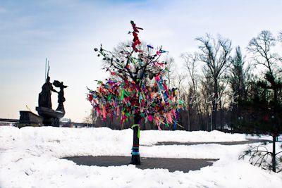 Киев. «Дерево счастья» на аллее молодожёнов
