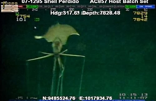 cratura submarina