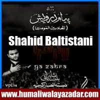 http://ishqehaider.blogspot.com/2013/07/shahid-baltistani-nohay-2014.html