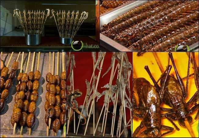 5 Makanan Teraneh dan Terunik di Pasar Malam Beijing
