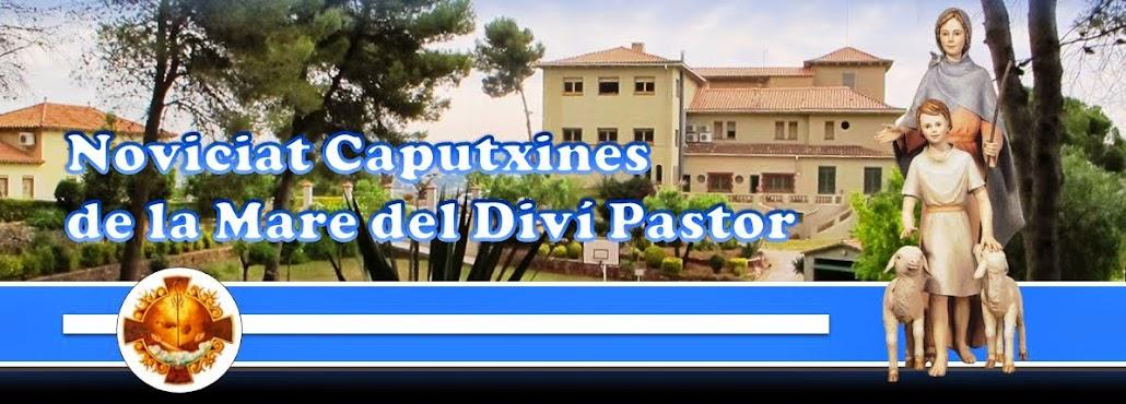 NOVICIADO HH. Cap. MDP