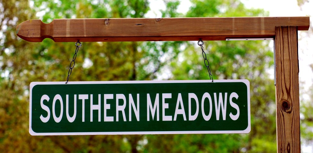 Southern Meadows