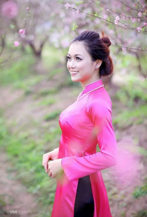 Vietnamese girls and long dresses wikichoices com