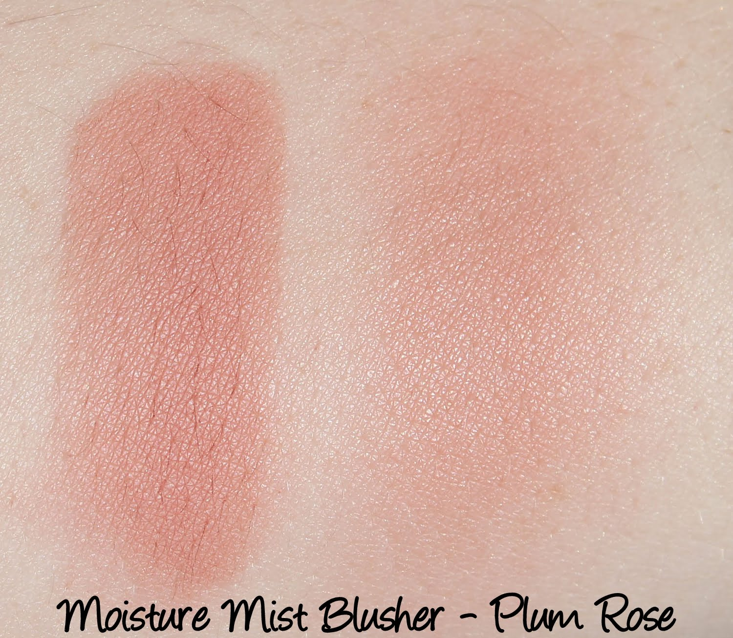 Moisture Mist Blusher B03 Plum Rose Swatches & Review