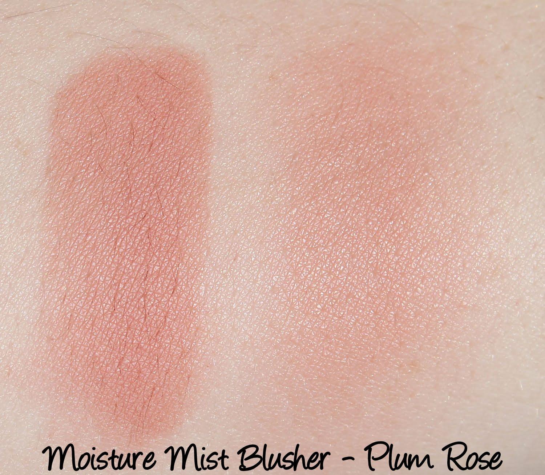 Moisture Mist Blusher B03 Plum Rose Swatches & Review