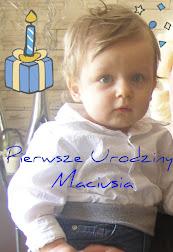 Maciek - Roczniak