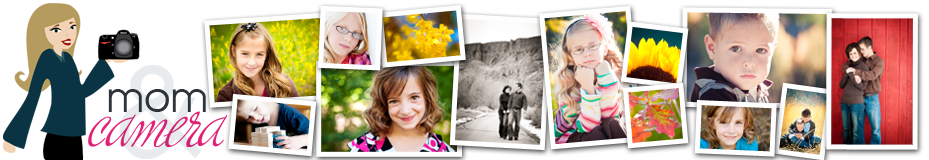 Photographs and Photography Tips by A Mom and a Camera