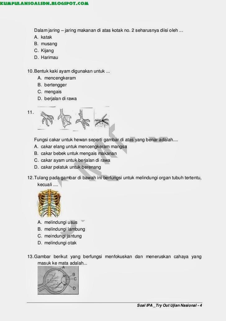 Latihans Soal Un Us Try Out Ipa Kelas 6 Vi Sd Ta 2013 2014 Kumpulan Soal Sd