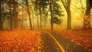 Otoño es Autumn