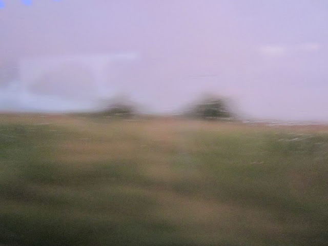 Blurry view from a coach window. Brown, green and grey. Two trees.