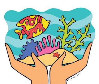 fungsi dan peran terumbu karang