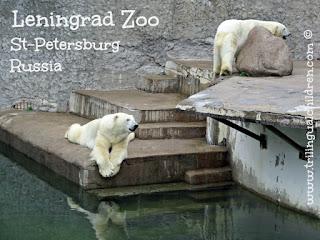 Leningrad Zoo St Petersburg Russia