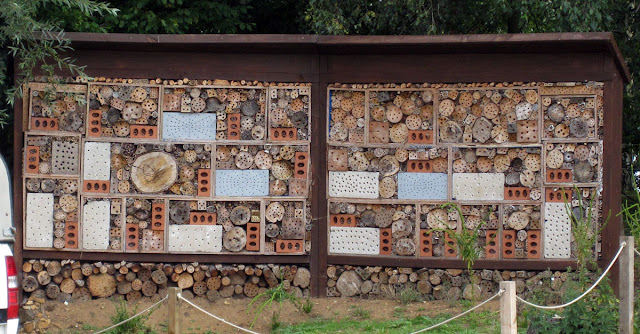 Bee wall with homes for solitary bees, opposite the visitor centre at Sevenoaks Wildlife Reserve.  14 August 2011.