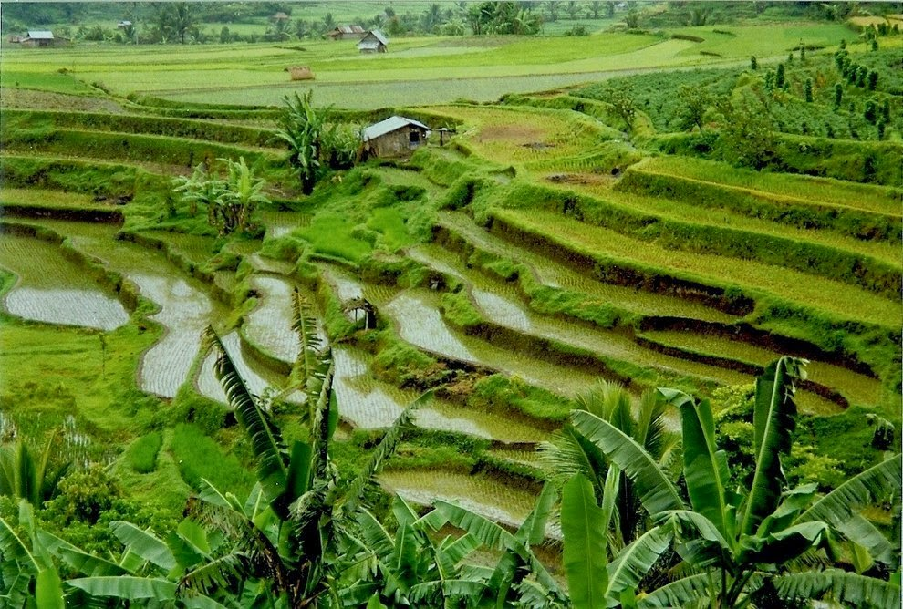 Most beautiful scenery Indonesia
