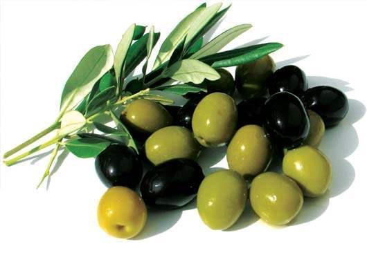 Minyak zaitun - minyak dari pohon yang penuh berkah(QS An-Nuur:035)