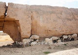 Shandan Great Wall