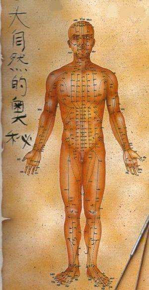 O nome em pinyin, a tradução e as funções energéticas dos pontos de acupuntura mais importantes
