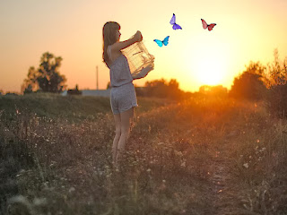 Fondo Coloridas mariposas