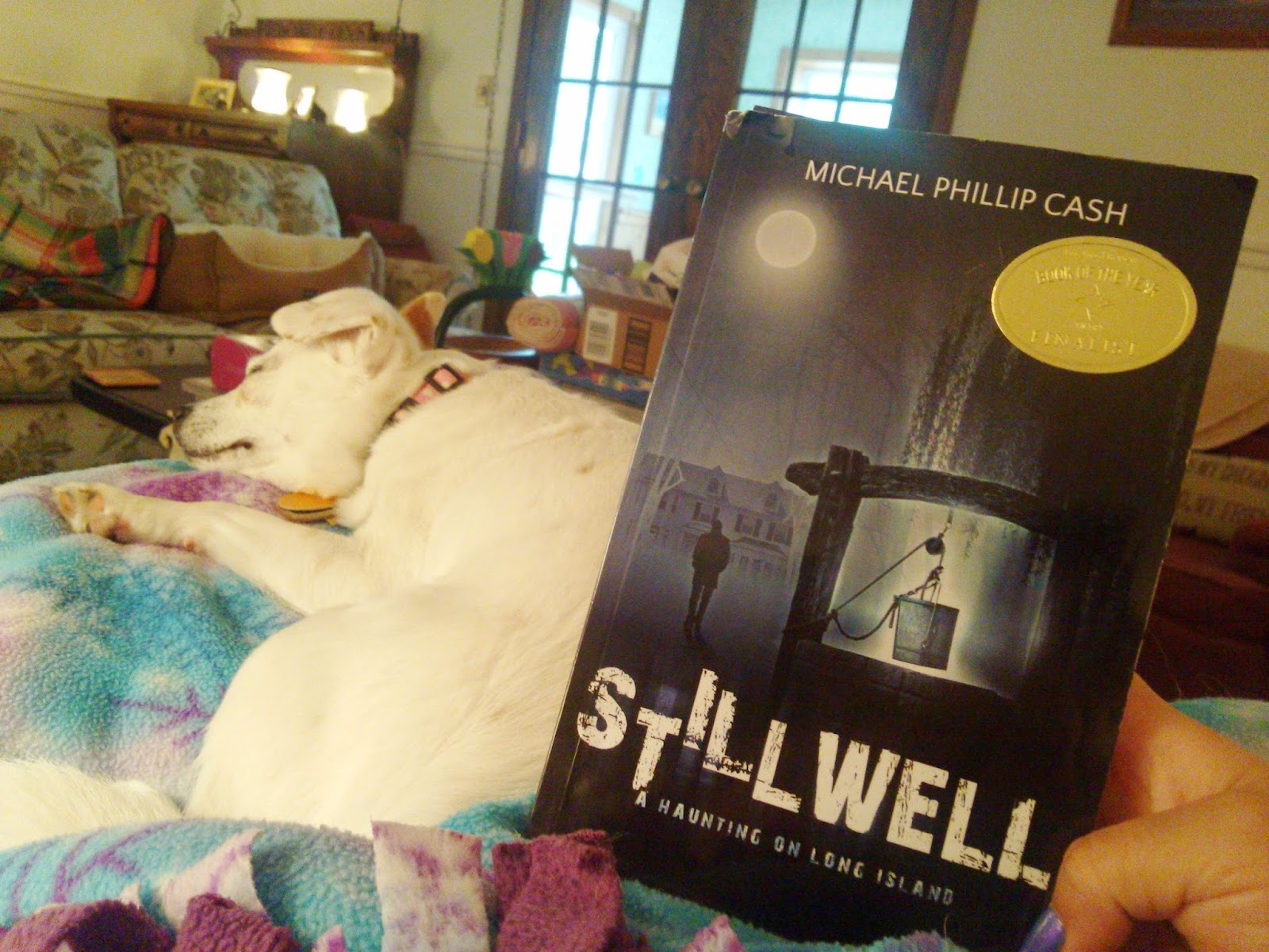 Stillwell: A Haunting on Long Island - Book Review
