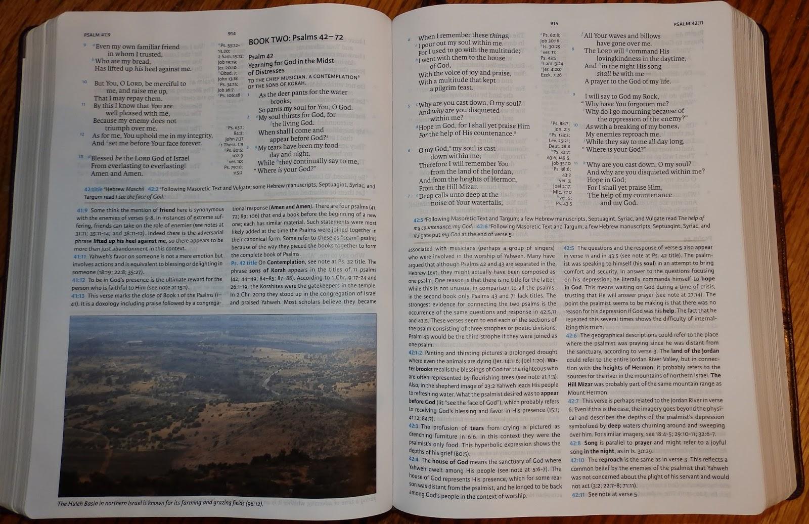 the bible hunter 2015