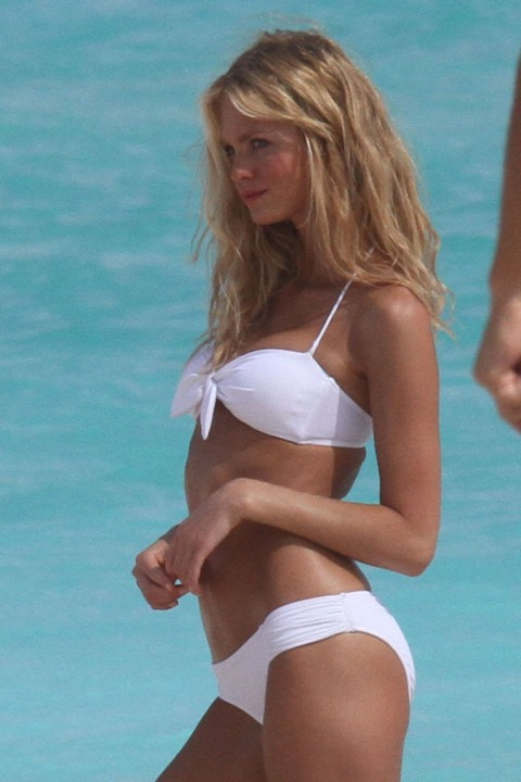 Erin Heatherton In A Bikini Photos