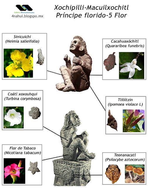 Las Flores que tiene en el cuerpo Xochipilli-Macuixochitl