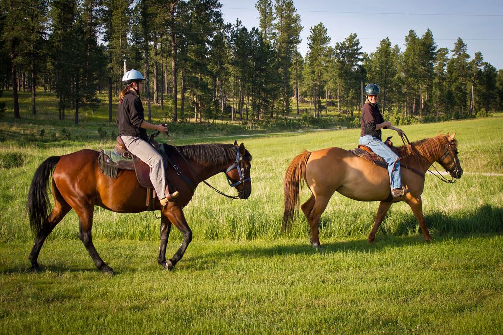 grant ashley 39 s adventures horseback riding in custer