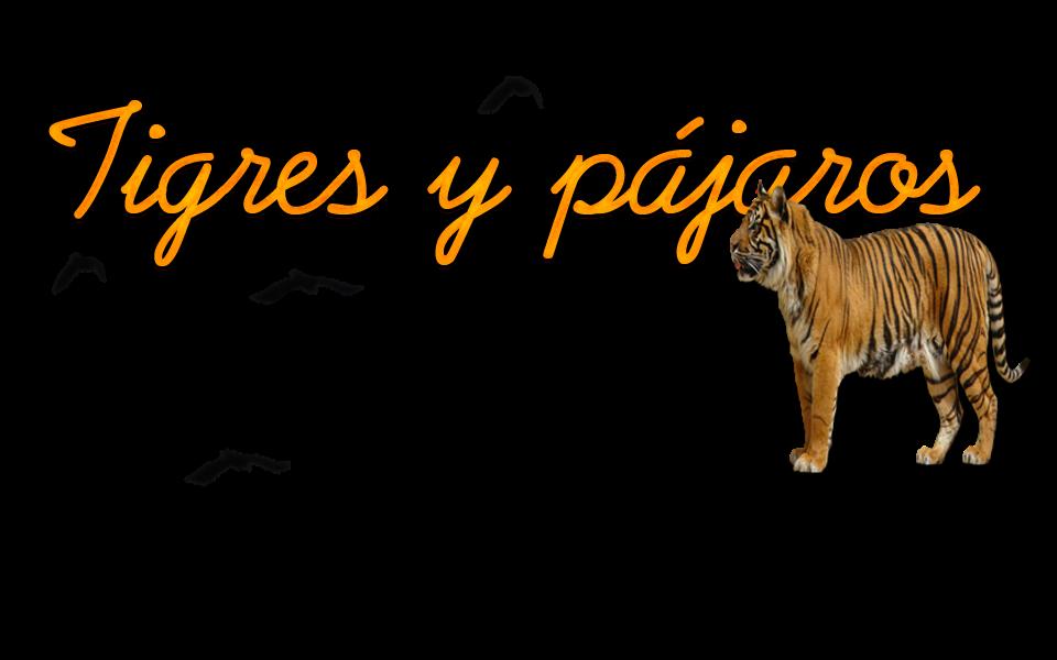 Tigres y Pájaros.