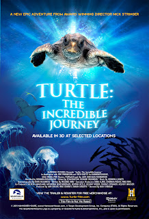 "Review | ""Turtle: The Incredible Journey"""