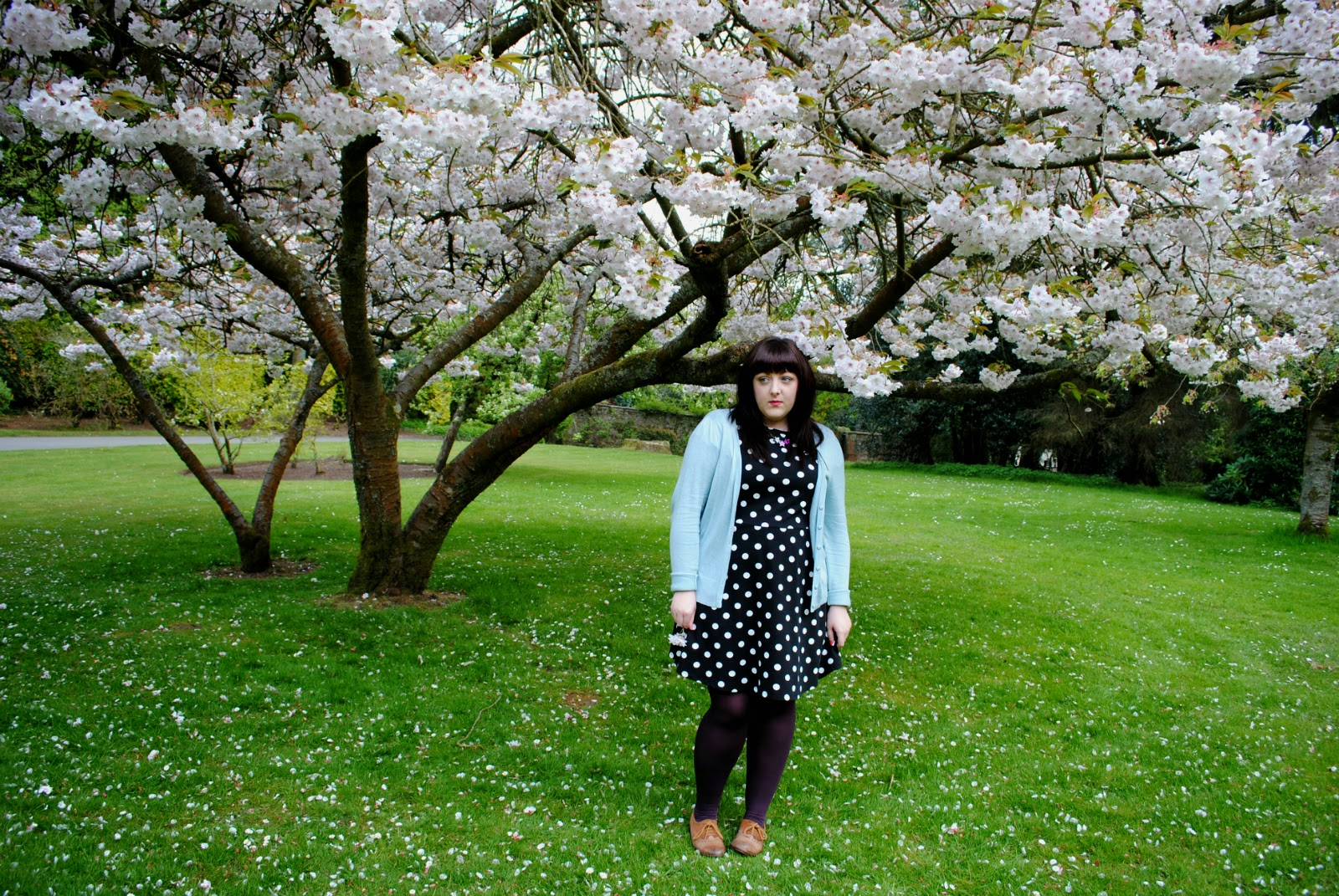 fashion photography outfit ootd polka dots cherry blossom