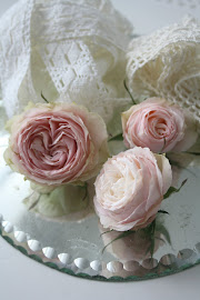Ljust rosa är favoritfärgen- på pelargoner, rosor och tulpaner