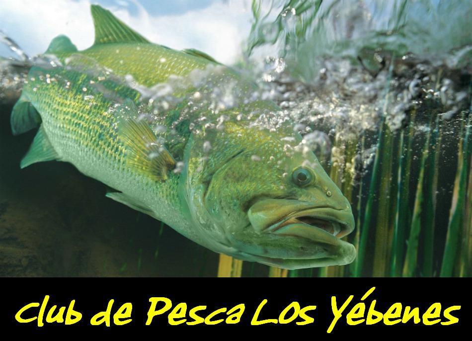 Club de Pesca     Los Yébenes