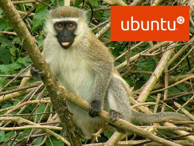 "Ubuntu 15.04 terá o Codinome ""Vivid Vervet"""