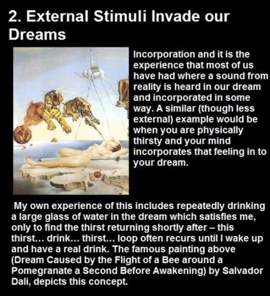 10 interesting facts about dreams arhguz