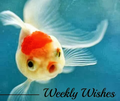 Weekly Wishes #5