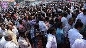 Srihari Stature unveiling event photos-thumbnail-16